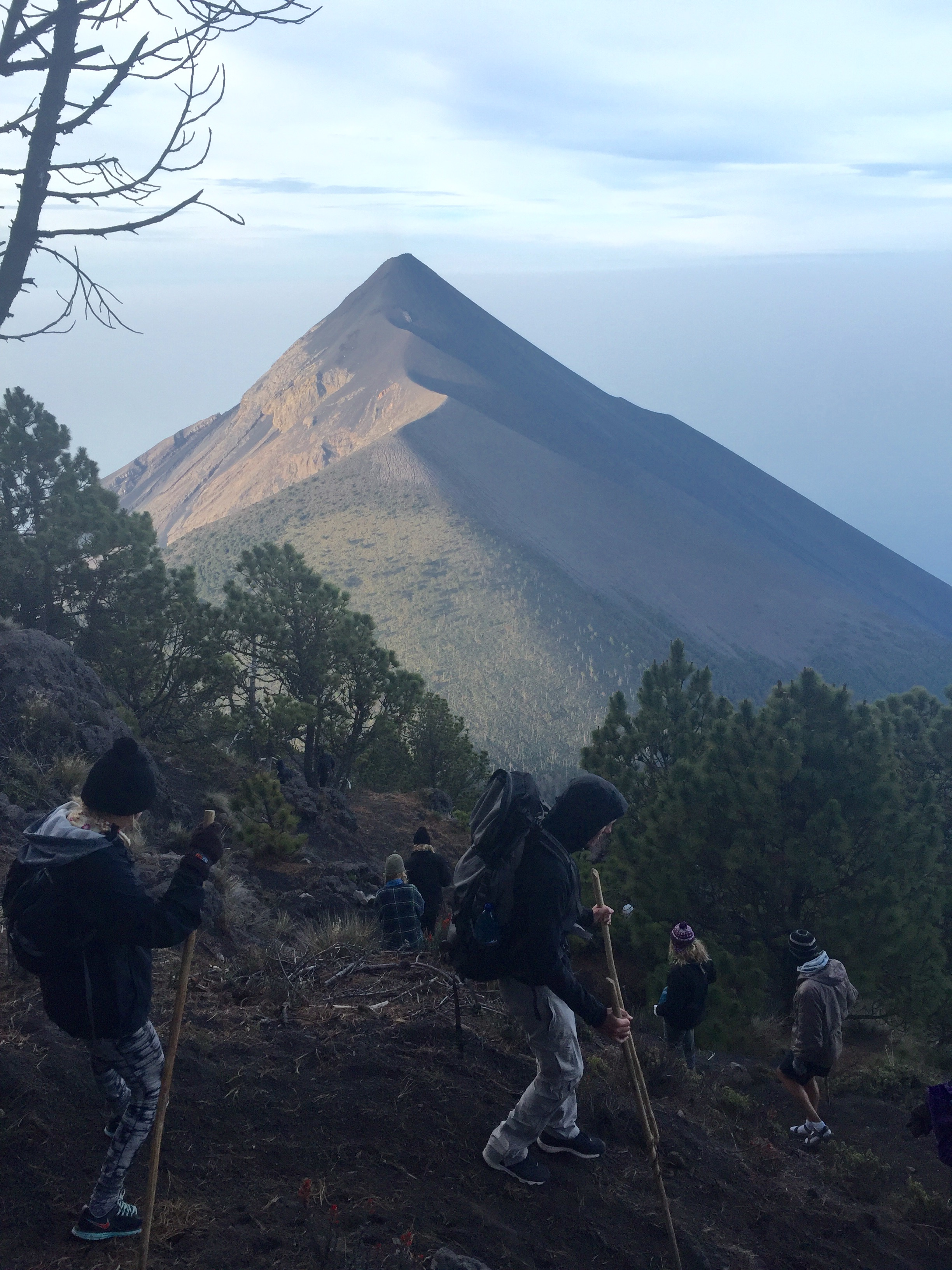 The third portion of our hike in the pine forest, with a view of Volcan de Fuego.