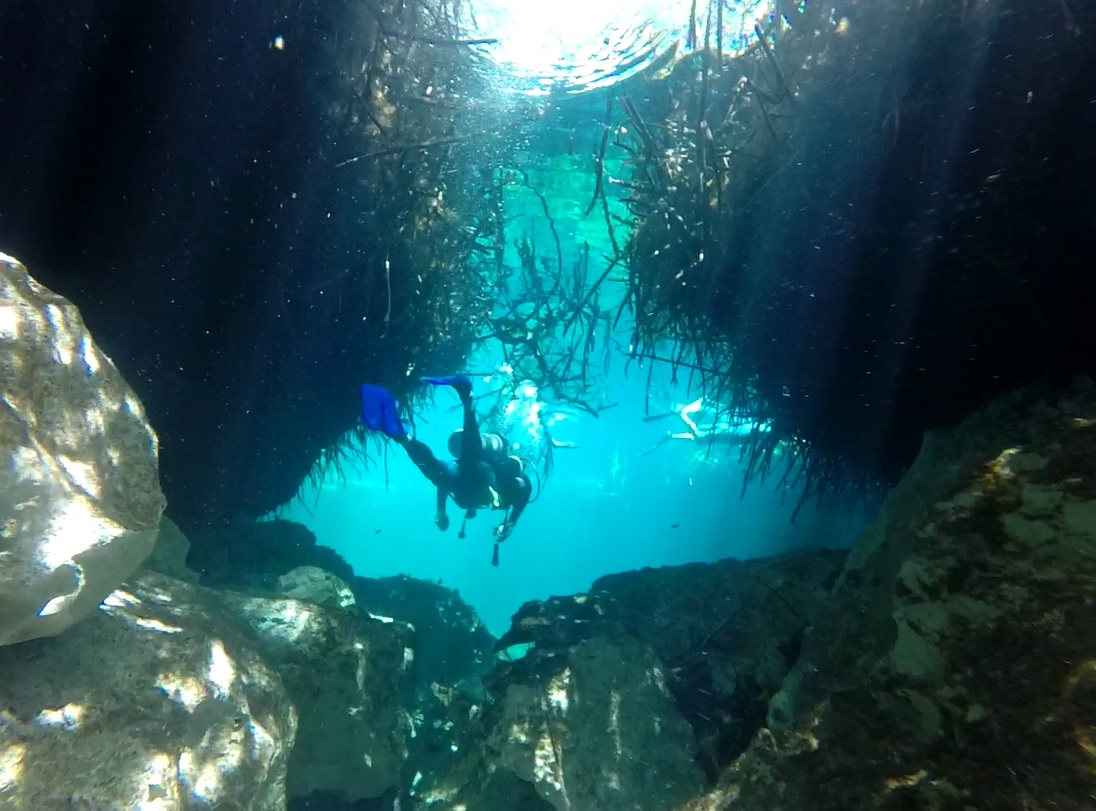 Diving through the Casa Cenote, one of the longest cave systems in the world.